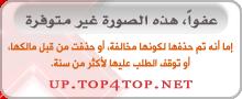 أحداث اليمن وتداعياتها [متجدد] P_1333ytvcv1